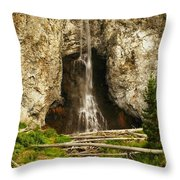 The Unknown Path Throw Pillow