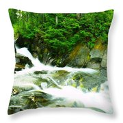The Upper Paradise River Throw Pillow