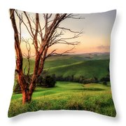 The Valley Throw Pillow by Ray Warren