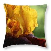 The Velvet Iris Throw Pillow