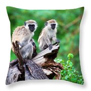 The Vervet Monkey. Lake Manyara. Tanzania. Africa Throw Pillow