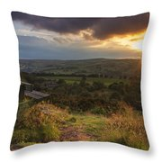 The View Throw Pillow