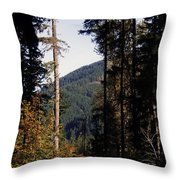 The View From Cispus Throw Pillow