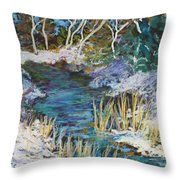 The View From County Hwy Q Throw Pillow
