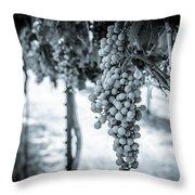 The Vineyard   Bw Throw Pillow