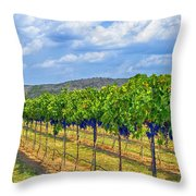 The Vineyard In Color Throw Pillow