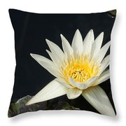 The Waking Up... Throw Pillow