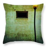 The Wall And The Lamppost Throw Pillow