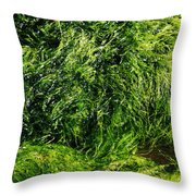 The Walls Are Alive - Seaside Abstract Throw Pillow