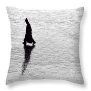 The Wanderer.. Throw Pillow