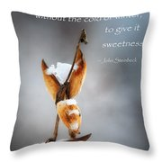 The Warmth Of Summer Throw Pillow