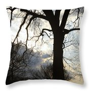 The Washington Monument Lost In The Trees Throw Pillow