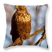 The Watcher In The Woods Throw Pillow