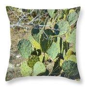 Cedar Park Texas Prickly Pear Cactus Throw Pillow