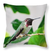 The Watchman On Duty Throw Pillow