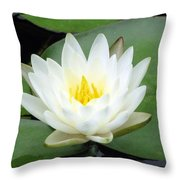 The Water Lilies Collection - 04 Throw Pillow