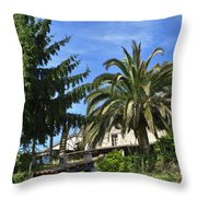 The Water Wheel  Throw Pillow