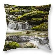 The Water Will Throw Pillow by Jon Glaser