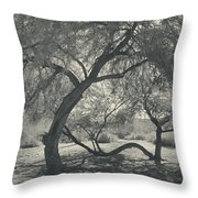 The Way We Move Together Throw Pillow