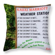 The Weather Report Throw Pillow