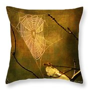 The Web We Weave Throw Pillow by Darren Fisher