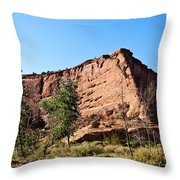 The Wedge Canyon Dechelly Throw Pillow