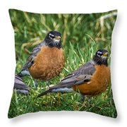 The Welcoming Committee E186 Throw Pillow
