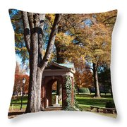 The Well - Davidson College Throw Pillow