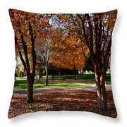 The Well In The Distance-davidson College Throw Pillow