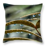 The Wet Of The Rain V2 Throw Pillow