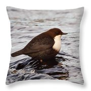 The White-throated Dipper Throw Pillow