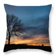 The Wild Blue Throw Pillow