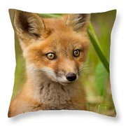 The Wild Pup Throw Pillow