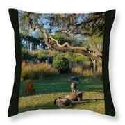 The Wildebeest Throw Pillow
