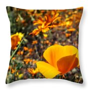 The Wildflowers Are Here And Spring Has Arrived Throw Pillow