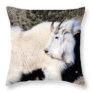 The Wind On The Mountain Throw Pillow