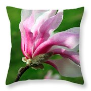 The Windblown Pink Magnolia 1 - Flora - Tree - Spring - Garden Throw Pillow