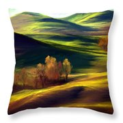 The Winter Is Over Throw Pillow
