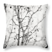 The Winter Pear Tree In Black And White Throw Pillow