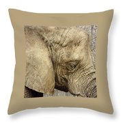 The Wise Old Elephant Throw Pillow