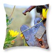 The Wise Owl Padlock - Cambria California  Throw Pillow