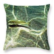 The Wishing Fish Throw Pillow