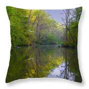 The Wissahickon Creek In The Morning Throw Pillow