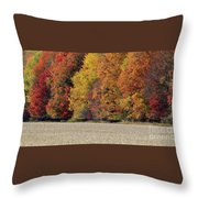 The Wonder Of Fall Throw Pillow