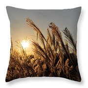 The Wonder Of The Setting Sun Throw Pillow