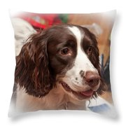 The Wonders Of Christmas Throw Pillow