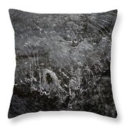 Ice Over The River Throw Pillow