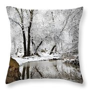 The Wonders Of Winter  Throw Pillow