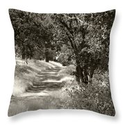 The Wooded Path Throw Pillow