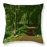 The Wooded Path... Throw Pillow